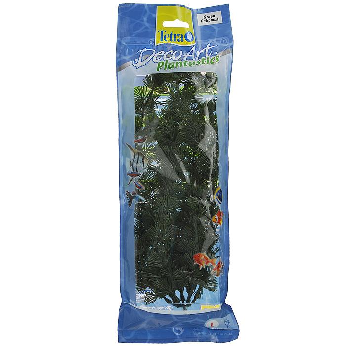 Искусственное растение для аквариума Tetra Кабомба L0120710Это растение хорошо подойдет для оформления аквариума.Естественно выглядящее искусственное растение;Для использования в любых аквариумах;Создает отличное место для укрытия (в т.ч. для метания икры);Легко и быстро устанавливается, является абсолютно безопасным;Не требует ухода;Долгое время не теряет форму и окраску. Высота растения: 30 см.