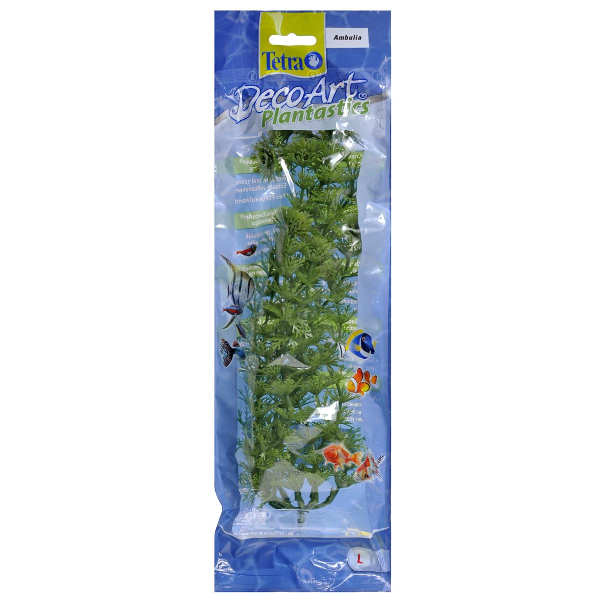 Искусственное растение для аквариума Tetra Амбулия L0120710Это растение хорошо подойдет для оформления аквариума.Естественно выглядящее искусственное растение;Для использования в любых аквариумах;Создает отличное место для укрытия (в т.ч. для метания икры);Легко и быстро устанавливается, является абсолютно безопасным;Не требует ухода;Долгое время не теряет форму и окраску. Высота растения: 30 см.