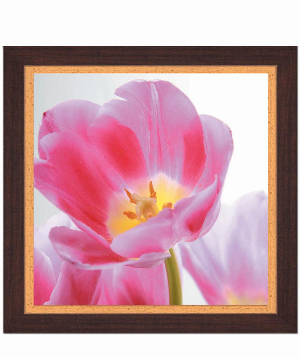 Постер в раме Postermarket Тюльпан, 30 см х 30 смPM-3005Картина для интерьера (постер) - современное и актуальное направление в дизайне любых помещений. Постер с красочным изображением розового тюльпана оформлен в раму коричневого цвета, выполненную из пластика под дерево. Картина защищена прозрачным пластиком. С задней стороны имеется петелька для подвешивания к стене. Картина может использоваться для оформления любых интерьеров: - дом, квартира (гостиная, спальня, кухня, прихожая, детская); - офис (комната переговоров, холл, кабинет); - бар, кафе, ресторан или гостиница. Картины, предоставляемые компанией Постермаркет: - собраны вручную из лучших импортных комплектующих; - надежно упакованы в пленку с противоударными уголками.
