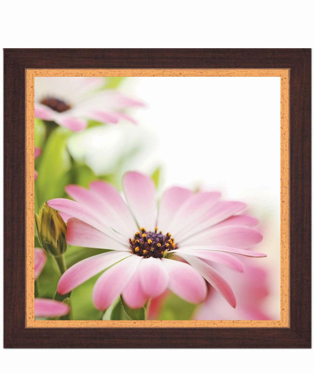 Постер в раме Postermarket Розовая хризантема, 30 х 30 смES-412Картина для интерьера (постер) - современное и актуальное направление в дизайне любых помещений.Постер с красочным изображением розовой хризантемы оформлен в раму коричневого цвета, выполненную из пластика под дерево. Картина защищена прозрачным пластиком. С задней стороны имеется петелька для подвешивания к стене.Картина может использоваться для оформления любых интерьеров: - дом, квартира (гостиная, спальня, кухня, прихожая, детская); - офис (комната переговоров, холл, кабинет); - бар, кафе, ресторан или гостиница. Картины, предоставляемые компанией Постермаркет:- собраны вручную из лучших импортных комплектующих; - надежно упакованы в пленку с противоударными уголками.