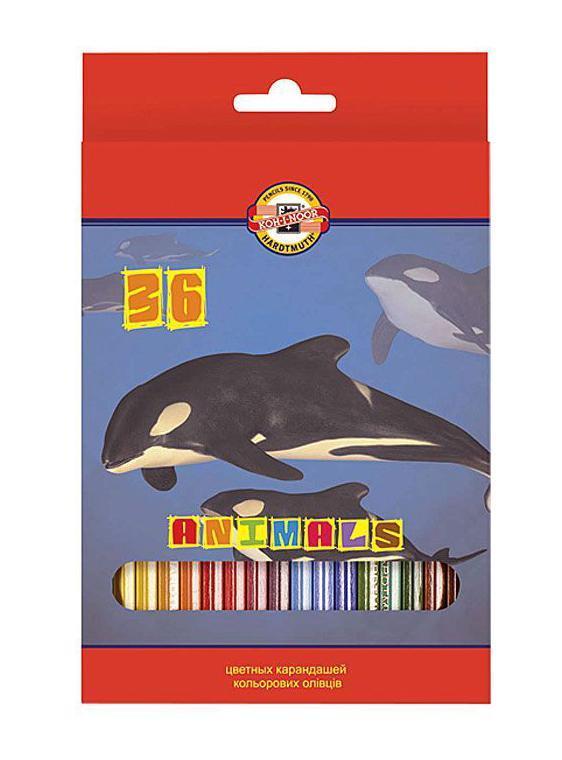 Цветные карандаши Животные, 36 цветов610842Цветные карандаши Животные непременно, понравятся вашему юному художнику. Набор включает в себя 36 ярких насыщенных цветных карандашей, которые идеально подходят для малышей. Шестигранный корпус изготовлен из натуральной древесины. Карандаши имеют прочный неломающийся грифель, не требующий сильного нажатия и легко затачиваются. Порадуйте своего ребенка таким восхитительным подарком!