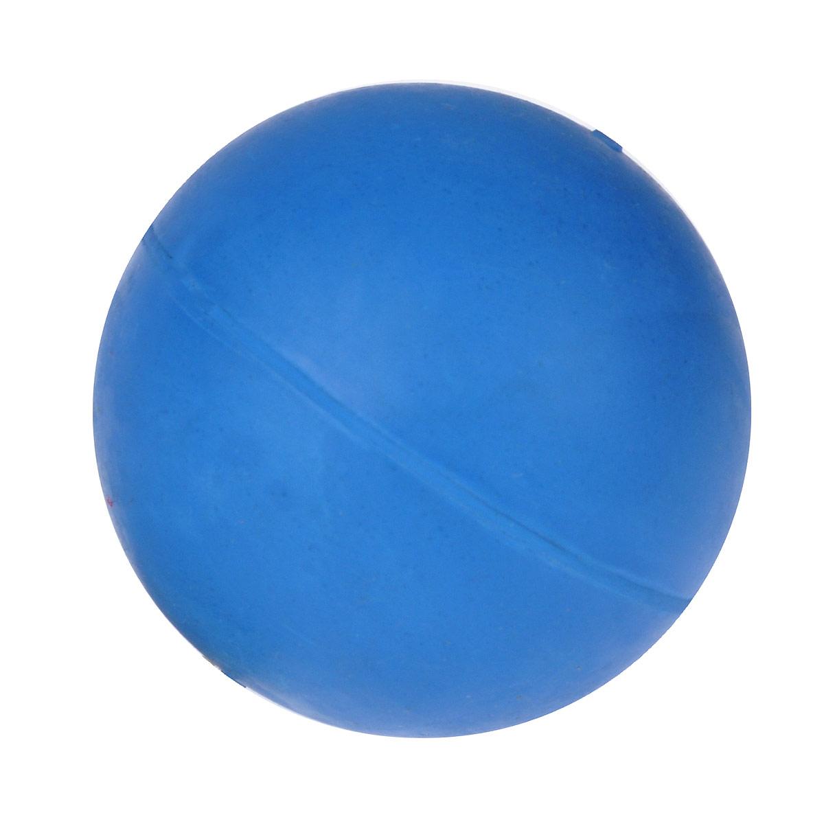 Игрушка для собак Beeztees Мяч, цвет: синий, диаметр 7,5 см625504Игрушка для собак Beeztees Мяч изготовлена из прочной цветной литой резины. Предназначена для игр с собакой любого возраста. Такая игрушка привлечет внимание вашего любимца и не оставит его равнодушным. Диаметр: 7,5 см.