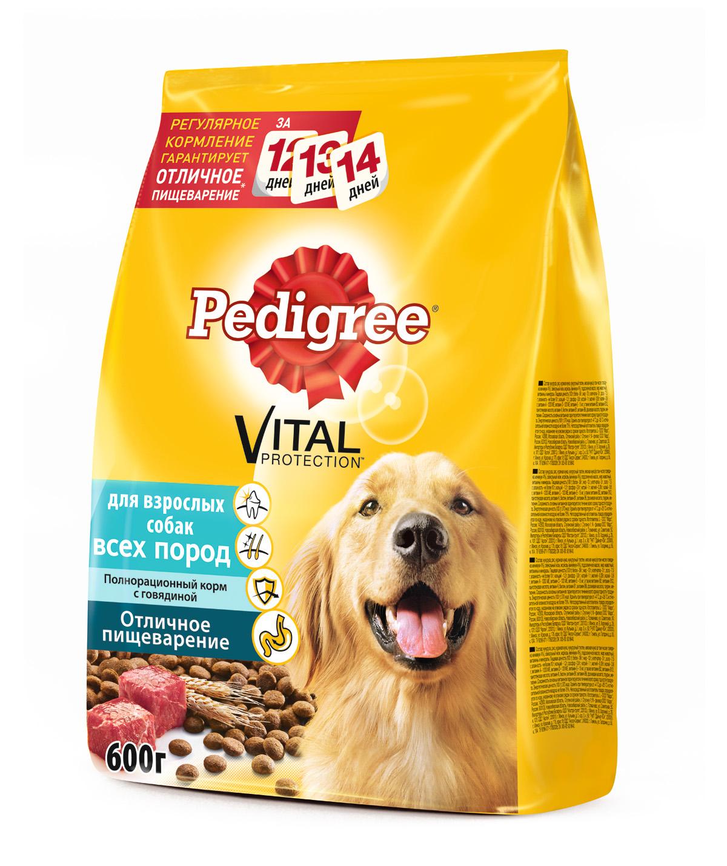 Корм сухой Pedigree для взрослых собак всех пород, с говядиной, 600 г0120710Сухой рацион Pedigree - это полезный и вкусный корм, приготовленный по специальным рецептам с учетом физиологических потребностей собак.Особенности сухого корма Pedigree:оптимальный уровень кальция способствует укреплению зубов;ланолевая кислота, цинк и витамины группы В необходимы для здоровья кожи и шерсти;витамин Е и цинк поддерживают иммунную систему;высокоусвояемые ингредиенты и клетчатка обеспечивают оптимальное пищеварение. Состав: кукуруза, рис, куриная мука, кукурузный глютен, мясная мука (в том числе говядина минимум 4%), свекольный жом, морковь (минимум 4%), подсолнечное масло, жир животный, витамины и минералы.Пищевая ценность в 100 г: белки - 22 г, жиры - 11 г, зола - 7 г, клетчатка - 5 г, влажность - не более 10 г, кальций - 1,0 г, фосфор - 0,9 г, натрий - 0,3 г, калий - 0,58 г, магний - 0,1 г, цинк - 18 мг, медь - 1,5 мг, витамин А - 1500 МЕ, витамин Е - 30 мг, витамин D3 - 120 МЕ, а также витамины В2, В4, В5, В12, ниацин, омега-6, омега-3, полиненасыщенные жирные кислоты. Энергетическая ценность в 100 г: 355 ккал.Вес: 600 г.Товар сертифицирован.