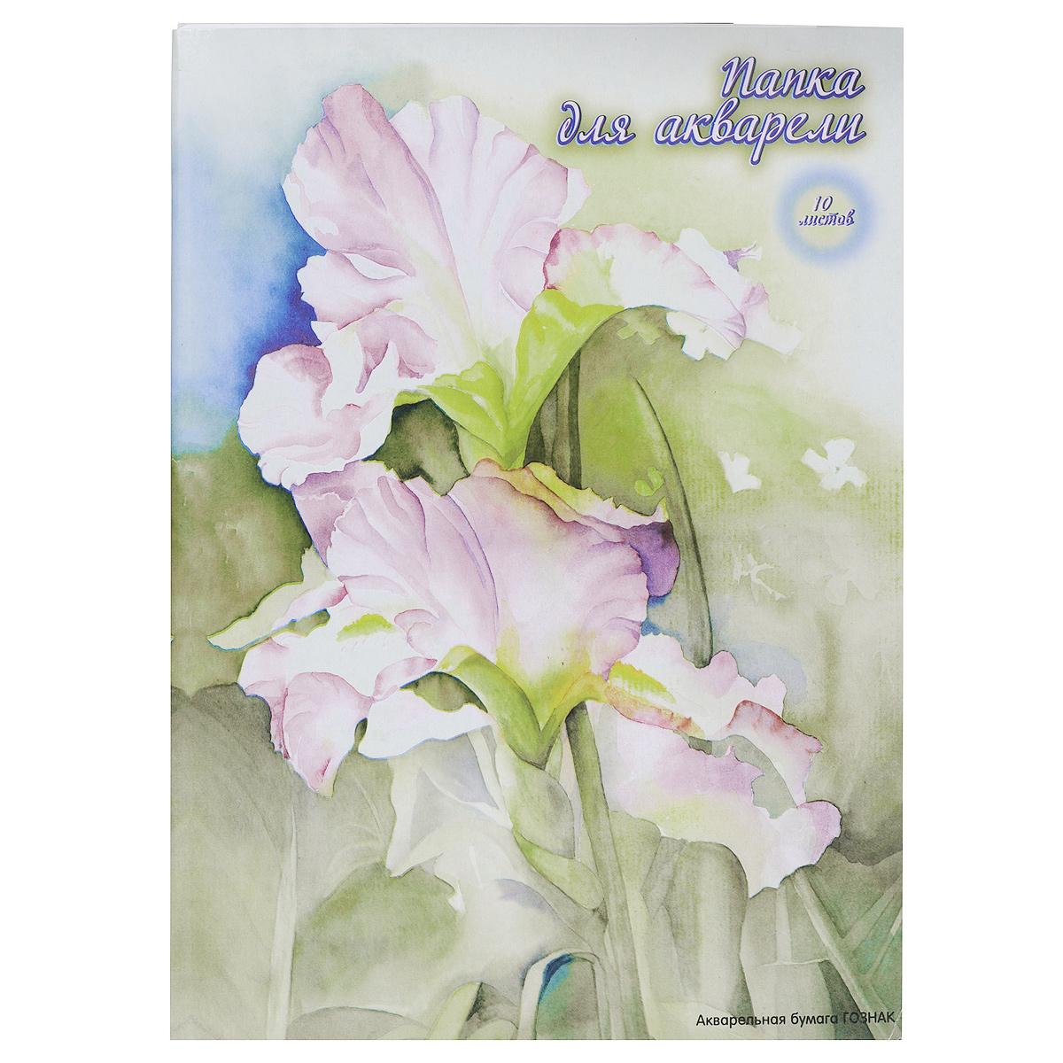 Бумага для акварели ACTION! Цветок, 10 листов, формат А3, цвет папки: серыйAFA-3/10серыйБумага ACTION! Цветок предназначена для акварельных работ. Комплект содержит десять листов бумаги формата А3, упакованных в картонную папку с изображением цветка. Рекомендуемый возраст: от 6 лет.