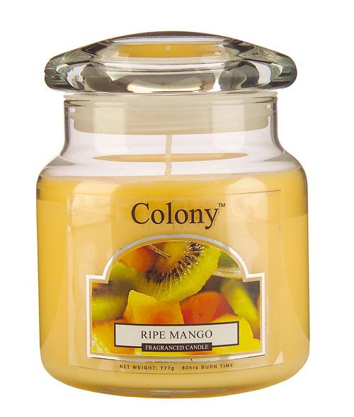 Wax Lyrical Спелый манго ароматизированная свеча в стекле средняя, 90 часовCH0713Сочный фруктовый аромат спелых фруктов: экзотического манго, персиков, арбуза. Уважаемые клиенты! Обращаем ваше внимание на возможные изменения в дизайне упаковки. Поставка осуществляется в зависимости от наличия на складе.