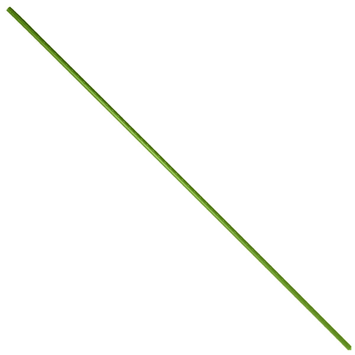 Опора для растений Green Apple, цвет: зеленый, диаметр 0,8 см, длина 75 см, 5 штGCSP-8-75Опора для растений Green Apple выполнена из высококачественного металла, покрытого цветным пластиком. В наборе 5 опор, выполненных в виде ствола растения с шипами. Такие опоры широко используются для поддержки декоративных садовых и комнатных растений. Также могут применятся для поддержки вьющихся растений в парниках. Длина опоры: 75 см. Диаметр опоры: 0,8 см. Комплектация: 5 шт.