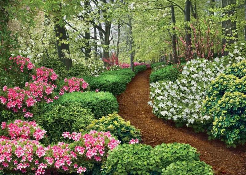 Фотообои Твоя Планета Premium. Весенний сад, 8 листов, 272 х 194 см4607161056110Основа фотообоев Твоя Планета Premium. Весенний сад - импортная бумага высокого качества и повышенной плотности с нанесенным на неё цветным фотоизображением. Технология сборки фрагментов в единую картину довольно проста. Это наиболее распространенный вид обоев, позволяющих создать в квартире (комнате) определенное настроение и даже несколько расширить оптический объем. Фотообои пользуются популярностью потому, что они недорогие и при этом позволяют получить массу удовольствий при созерцании изображения. Количество листов: 8. Размер (ШхВ): 272 см х 194 см.