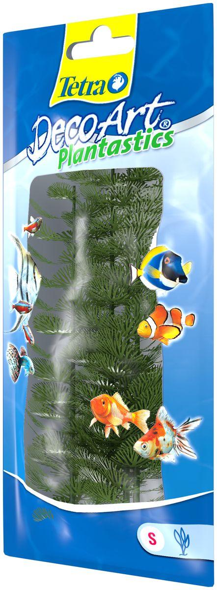 Искусственное растение для аквариума Tetra Кабомба S606906Это растение хорошо подойдет для оформления аквариума. Естественно выглядящее искусственное растение; Для использования в любых аквариумах; Создает отличное место для укрытия (в т.ч. для метания икры); Легко и быстро устанавливается, является абсолютно безопасным; Не требует ухода; Долгое время не теряет форму и окраску. Высота растения: 15 см.