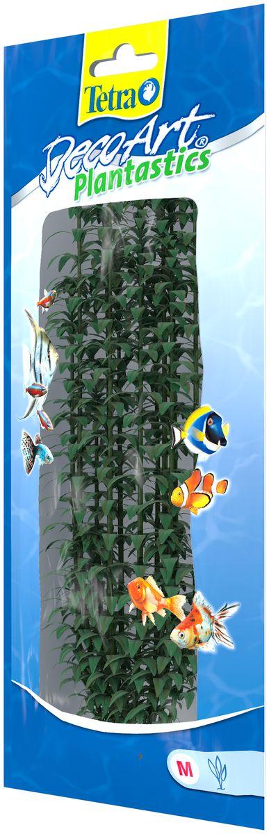 Искусственное растение для аквариума Tetra Гигрофила M606975Это растение хорошо подойдет для оформления аквариума. Естественно выглядящее искусственное растение; Для использования в любых аквариумах; Создает отличное место для укрытия (в т.ч. для метания икры); Легко и быстро устанавливается, является абсолютно безопасным; Не требует ухода; Долгое время не теряет форму и окраску. Высота растения: 23 см.