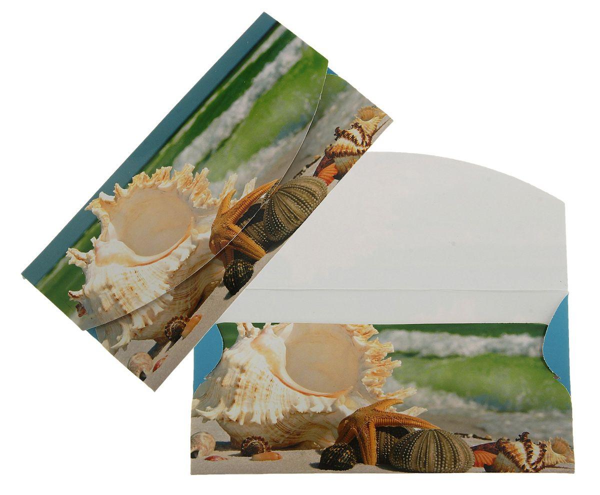 Конверт для денег Ракушка. 789325789325Конверт для денег Ракушка изготовлен из картона и украшен яркой картинкой с изображением ракушки. Это необычная красивая одежка для денежного подарка, а так же отличная возможность сделать его более праздничным и создать прекрасное настроение!