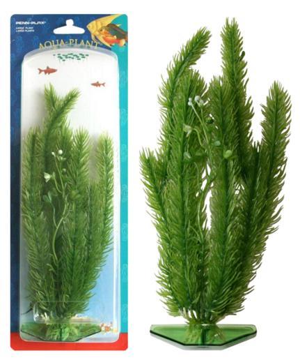 Растение CLUB MOSS 22см зеленое. МАЙЯКА.P8MРаспространение: Серевная Америка. Использование: размещается группами на переднем и среднем плане.