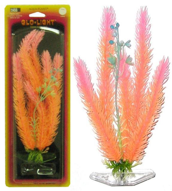Растение CLUB MOSS 27см оранжево-розовое светящееся. МАЙЯКА.P8LGLРаспространение: Серевная Америка. Использование: эффектный светящийся вариант популярного растения.