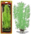 Растение STONEWORT-NITELLA 18см зеленое светящееся. БЛЕСТЯНКАP14SGLРаспространение: Азия, Европа. Использование: эффектный светящийся вариант популярного растения.