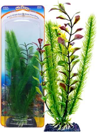 Растение-композиция CLUB MOSS-BLOOMING LUDWIGIA 17см. ЛЮДВИГИЯ-КРИПТОКОРИНАP2GVSHКомпозиция их двух растений на массивном основани, удерживающем композицию на дне аквариума. Растения, объединенные на одном основании являются оригинальным элементом оформления аквариума.