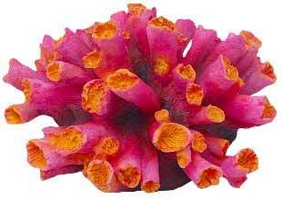 Декорация КОРАЛЛ 10х8,5х5,5см красныйFIAD-1154Красочный пластиковый коралл. Комбинации из различных кораллов создают в аквариуме пеструю и причудливую картину морского дна. Красочная упаковка.