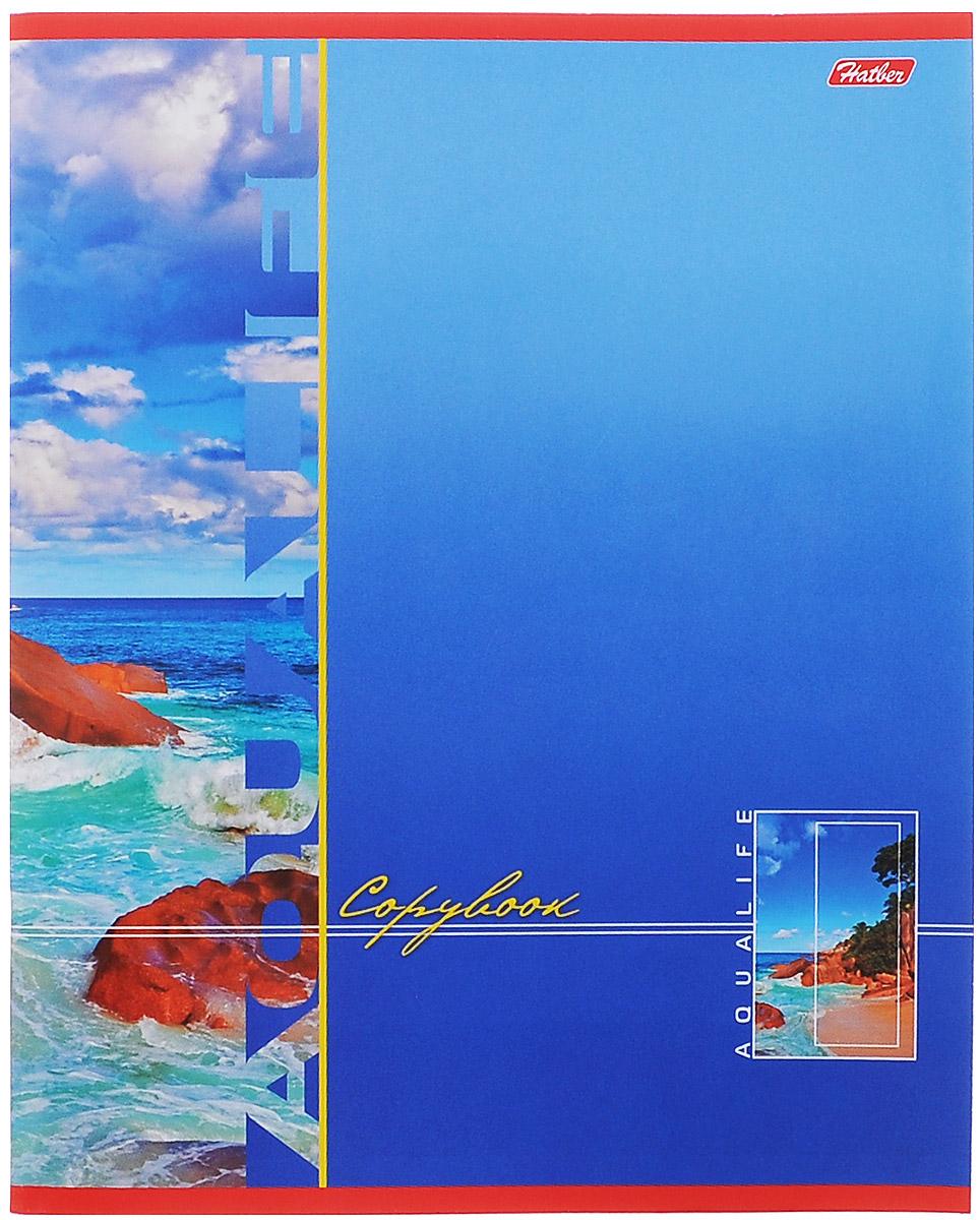Hatber Тетрадь в клетку Аквалайф, 96 листов, формат А5, цвет: голубой, оранжевый72523WDТетрадь в клетку Hatber Аквалайф предназначена для объемных записей и незаменима для старшеклассников и студентов.Обложка тетради выполнена из плотного картона. Внутренний блок тетради состоит из 96 листов белой бумаги с линовкой в клетку голубого цвета с полями. Листы тетради соединены скобами.