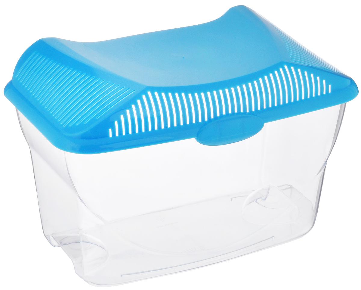 Аквариум-террариум Savic Aqua Smile, цвет: прозрачный, голубой, 3 л0116-0000_голубойАквариум-террариум Savic Aqua Smile, выполненный из высококачественного пластика, идеально подойдет для разведения небольших рыб, водоплавающих черепах, пауков. Изделие оснащено откидной крышкой с отверстиями для прохождения воздуха. Такой аквариум-террариум подходит к дизайну практически любого интерьера. Более того, его можно устанавливать практически в любой части комнаты или офиса, и в последствии без проблем перемещать в другие места. Размер (без учета крышки): 24 см х 14,5 см х 13,5 см. Высота (с учетом крышки): 16,7 см. Объем: 3 л.