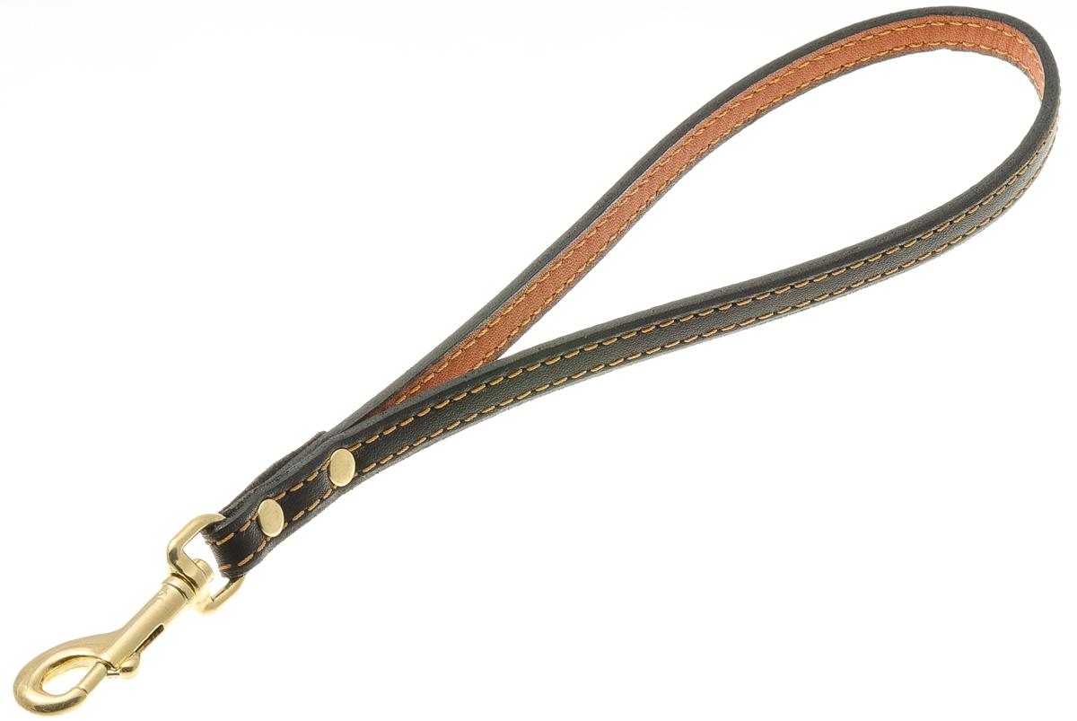 Водилка-петля для собак V.I.Pet, цвет: золото, ширина 10 мм72-0848Водилка-петля V.I.Pet, изготовленная из высококачественной кожи, состоит из ручки и мощного карабина. Используется при перемещении по городу, чтобы вести рядом крупную собаку.
