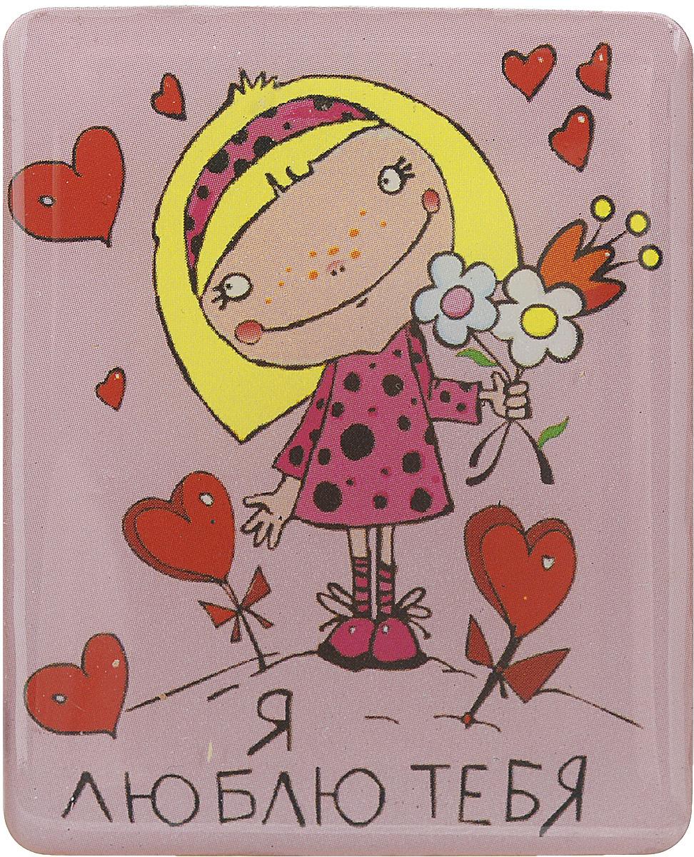 Магнит Феникс-презент Я люблю тебя, 4,5 x 5,5 смUP210DFМагнит прямоугольной формы Феникс-презент Я люблю тебя, выполненный из агломерированного феррита, станет приятным штрихом в повседневной жизни. Оригинальный магнит, декорированный изображением влюбленной девочки, поможет вам украсить не только холодильник, но и любую другую магнитную поверхность. Материал: агломерированный феррит.