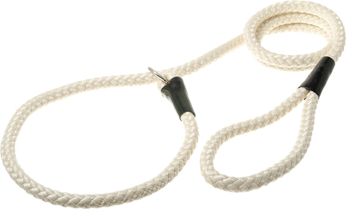 Поводок-удавка с кольцом нейлоновый канат 12мм*170см (слонов. кость)PDE1268IV
