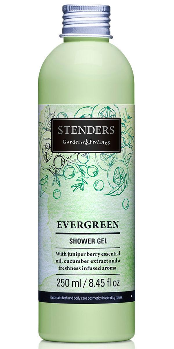 Stenders Гель для душа Evergreen (Эвергрин), 250 млSGF_EИспытайте восстанавливающую силу лесной свежести, наслаждаясь душем с нашим ароматным гелем для душа. Гель, насыщенный бодрящим можжевеловым эфирным маслом и огуречным экстрактом, нежно очистит кожу при помощи роскошной воздушной пены. Почувствуйте свежесть, подобную легкому дуновению ветерка, когда вашу кожу окутывает вдохновляющий аромат с нотками фруктов, цветов и леса. Летнюю свежесть и подлинную чистоту таит в себе экстракт зеленых огурцов. Он действует освежающе и успокаивающе. Кроме того, способен уменьшить припухлость кожи, придавая вам свежий вид.