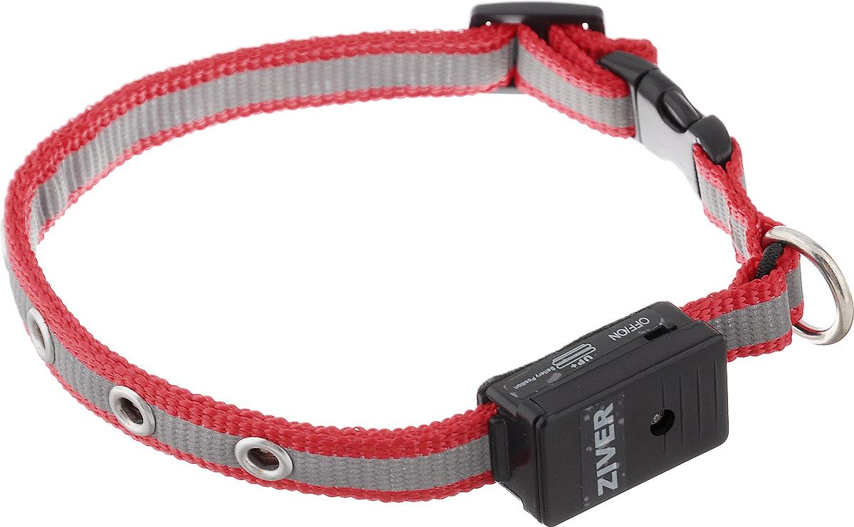 Ошейник Ziver Sensor для кошек и собак мелких пород, светящийся, цвет: красный, серый0120710Светящийся ошейник Ziver Sensor - это очередная новинка для мелких животных от компании ZIVER.Ошейник идеален для кошек и собак мелких пород, он поможет видеть их при прогулке в темное время суток, и теперь вы не потеряете их из виду. Ziver Sensor обезопасит ваше животное от попадания под автомобиль, так как водитель сможет заметить приближающуюся собаку на расстоянии до 800 метров.Ошейник работает в режиме автоматического включения при наступлении темноты, для включения этой функции поставьте выключатель в положение ON, для выключения - в положение OFF. Мигает красными огнями. Особенности ошейника:- автоматическое включение при наступлении темноты;- кнопка выключения светосенсора;- в темное время суток виден на расстоянии до 800 метров; - время работы батарейки - 40 часов; - крепкий и надежный карабин; - регулируемый размер;- мягкая подкладка комфортна для животного;- работает при температуре от -5°C до +30°C;- оснащен светоотражающей полоской; - влагозащищен от дождя и снега (не рекомендуем погружать в воду батарейный блок). Работает от двух батареек типа AG10 (входят в комплект). Длина ошейника: 25-27 см. Ширина ошейника: 1,2 см.