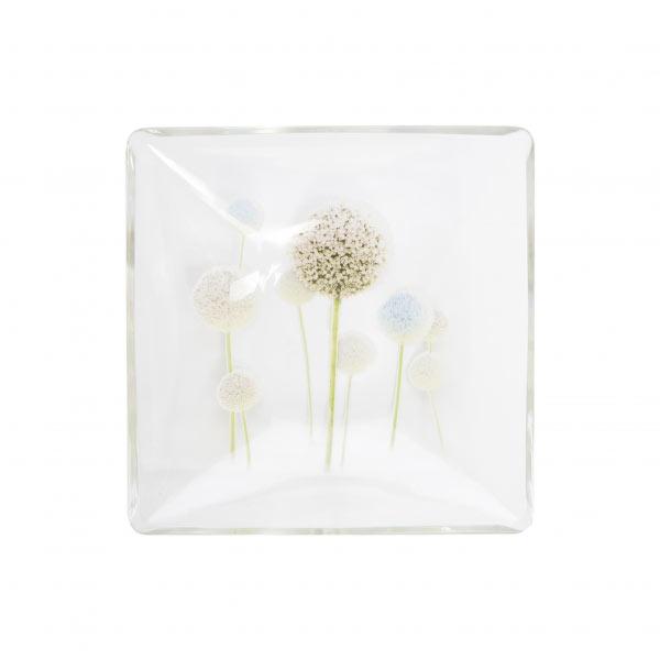 Миска Luminarc Eternal Spring, 16 х 16 смH8812Миска Luminarc Eternal Spring, декорированная красивым цветочным рисунком, изготовлена из высококачественного ударопрочного стекла. Изделие устойчиво к повреждениям и истиранию, в процессе эксплуатации не впитывает запахи и сохраняет первоначальные краски. Миска подходит для подачи жидких блюд, каш, мюсли и многого другого. Посуда Luminarc обладает не только высокими техническими характеристиками, но и красивым эстетичным дизайном. Luminarc - это современная, красивая, практичная столовая посуда. Можно использовать в СВЧ и посудомоечной машине.