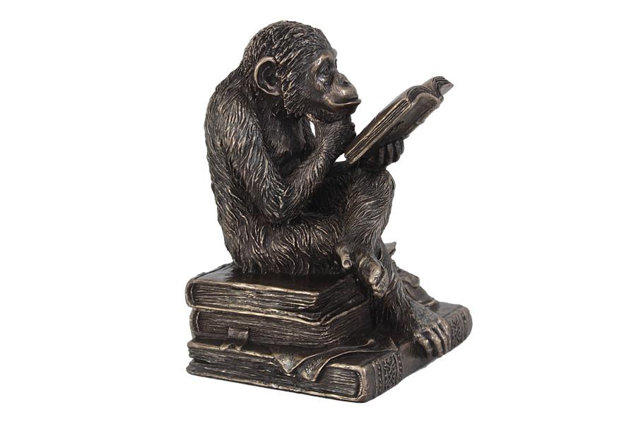 Статуэтка Veronese Обезьяна с книгой, 10,5 х 10 х 14 см veronese статуэтка шкатулка ученная обезьяна