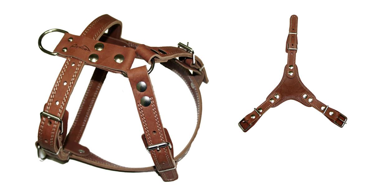 Шлея Аркон №2 универсальная, цвет: коньячный. ш2ук0120710Шлейка - это альтернатива ошейнику. Правильно подобранная шлейка от компании «Аркон» не стесняет движения собаки, не натирает кожу, поэтому животное чувствует себя в ней уверенно и комфортно.