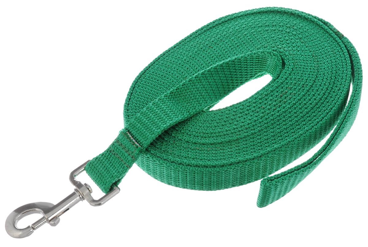Поводок капроновый для собак Аркон, цвет: зеленый, ширина 2,5 см, длина 7 мпк7м25Поводок для собак Аркон изготовлен из высококачественного цветного капрона и снабжен металлическим карабином. Изделие отличается не только исключительной надежностью и удобством, но и привлекательным современным дизайном. Поводок - необходимый аксессуар для собаки. Ведь в опасных ситуациях именно он способен спасти жизнь вашему любимому питомцу. Иногда нужно ограничивать свободу своего четвероногого друга, чтобы защитить его или себя от неприятностей на прогулке. Длина поводка: 7 м. Ширина поводка: 2,5 см.