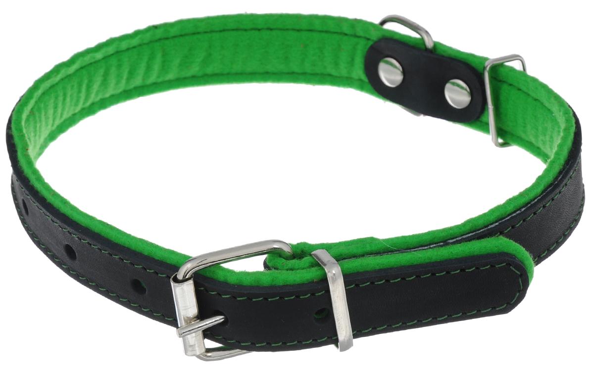 Ошейник для собак Аркон Фетр, цвет: зеленый, черный, ширина 2,5 см, длина 57 смоф25зОшейник Аркон Фетр изготовлен из высококачественной натуральной кожи, устойчивой к влажности и перепадам температур, и фетра. Мягкий фетр предотвратит натирание шеи собаки ошейником и позволит ей с комфортом наслаждаться прогулкой. Размер ошейника регулируется с помощью металлической пряжки, которая фиксируется на одном из 6 отверстий изделия. Ошейник отличается высоким качеством, удобством и универсальностью. Минимальный обхват шеи: 35 см. Максимальный обхват шеи: 49 см. Ширина: 2,5 см.