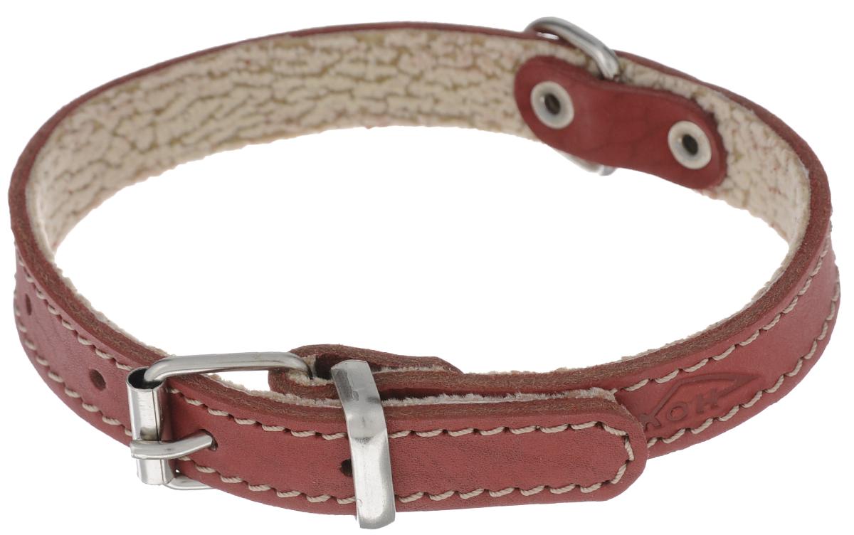 Ошейник Аркон Стандарт, цвет: красный, ширина 1,6 см, длина 36 см. о16по16пкрОшейник Аркон Стандарт изготовлен из кожи, устойчивой к влажности и перепадам температур. Клеевой слой, сверхпрочные нити, крепкие металлические элементы делают ошейник надежным и долговечным. На стороне, соприкасающейся с шеей, имеется подклад из мягкой ткани. Изделие отличается высоким качеством, удобством и универсальностью. Размер ошейника регулируется при помощи пряжки, зафиксированной на одном из 5 отверстий. Минимальный обхват шеи: 25 см. Максимальный обхват шеи: 33 см. Ширина: 1,6 см.