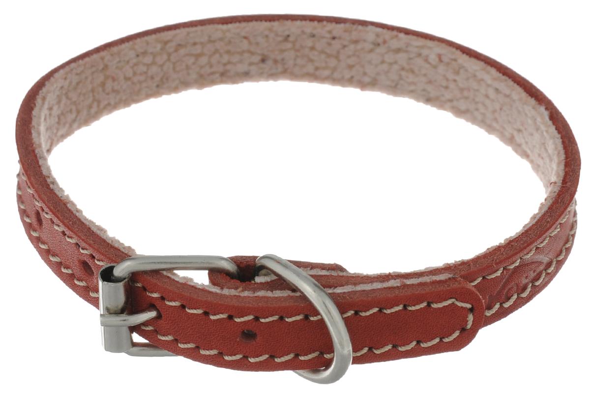Ошейник для собак Аркон Стандарт, цвет: красный, ширина 1,4 см, длина 32 см. о14по14пкрОшейник Аркон Стандарт изготовлен из кожи, устойчивой к влажности и перепадам температур. Клеевой слой, сверхпрочные нити, крепкие металлические элементы делают ошейник надежным и долговечным. На стороне, соприкасающейся с шеей, имеется подклад из мягкой ткани. Изделие отличается высоким качеством, удобством и универсальностью. Размер ошейника регулируется при помощи пряжки, зафиксированной на одном из 6 отверстий. Минимальный обхват шеи: 24 см. Максимальный обхват шеи: 32 см. Ширина: 1,4 см.