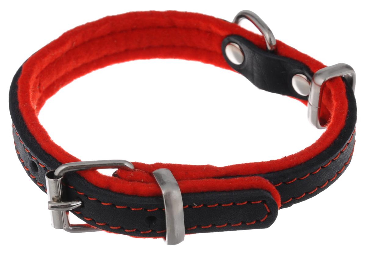 Ошейник для собак Аркон Фетр, цвет: черный, красный, ширина 1,6 см, длина 32 см. оф16оф16кОшейник для собак Аркон Фетр изготовлен из высококачественной натуральной кожи, устойчивой к влажности и перепадам температур, и фетра. Мягкий фетр предотвратит натирание шеи собаки ошейником и позволит ей с комфортом наслаждаться прогулкой. Клеевой слой, сверхпрочные нити, крепкие металлические элементы делают ошейник надежным и долговечным. Изделие отличается высоким качеством, удобством и универсальностью. Размер ошейника регулируется при помощи пряжки, зафиксированной на одном из 5 отверстий. Минимальный обхват шеи: 20,5 см. Максимальный обхват шеи: 28,5 см. Ширина: 1,6 см. Длина: 32 см.