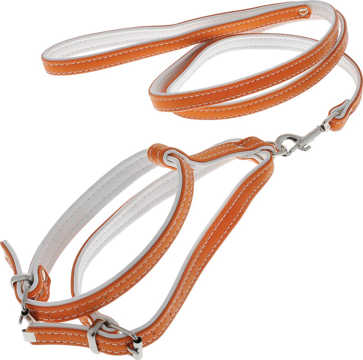 Комплект для животных Аркон Техно, цвет: оранжевый, белый, 2 предмета. кт150120710Комплект для животных Аркон Техно состоит из шлейки и поводка. Изделия изготовлены из искусственной кожи, фурнитура - из сверхпрочных сплавов металла. Надежная конструкция обеспечит вашему четвероногому другу комфортную и безопасную прогулку.Такой комплект подходит как для кошек, так и для мелких пород собак. Длина поводка: 1,1 м.Ширина поводка: 1,4 см.Обхват шеи: 27 - 33 см. Обхват груди: 37 - 44 см.Длина спинки: 11 см.Ширина ремней: 1,5 см; 1,6 см.