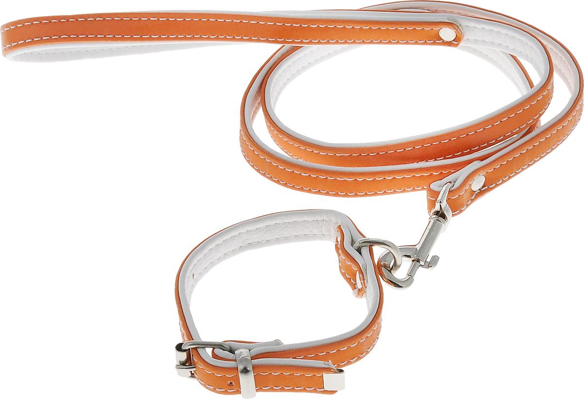 Комплект для животных Аркон Техно, цвет: оранжевый, белый, 2 предмета. кт320120710Комплект для животных Аркон Техно состоит из ошейника и поводка. Изделия изготовлены из искусственной кожи, фурнитура - из сверхпрочных сплавов металла. Надежная конструкция обеспечит вашему четвероногому другу комфортную и безопасную прогулку.Такой комплект подходит как для кошек, так и для мелких пород собак. Длина поводка: 1,1 м.Ширина поводка: 1,4 см.Обхват шеи: 19 - 26 см. Ширина ошейника: 1,4 см.
