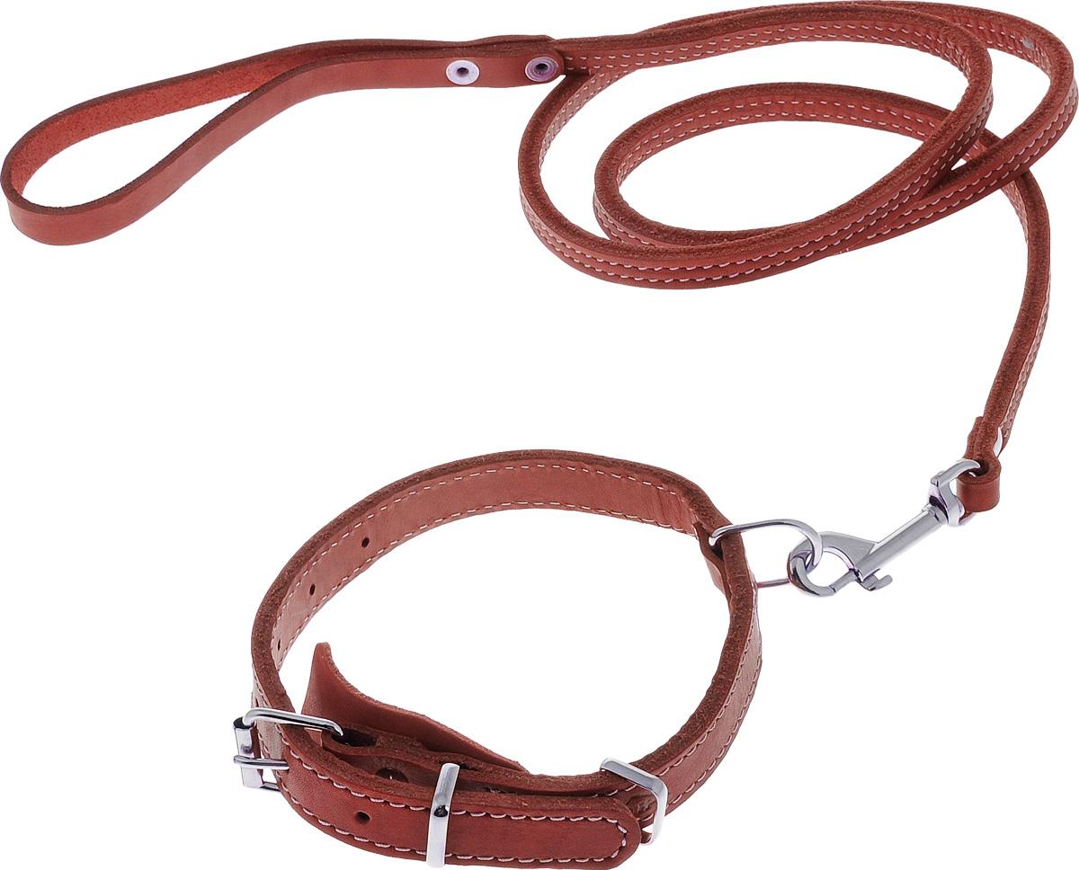 Комплект для собак Аркон Стандарт №6, цвет: красный, 2 предмета0120710Комплект для животных Аркон Стандарт №6 состоит из ошейника и поводка. Изделия изготовлены из высококачественного металла и натуральной кожи. Надежная конструкция обеспечит вашему четвероногому другу комфортную и безопасную прогулку.Такой комплект подходит для мелких и средних пород собак. Длина поводка: 1,4 м.Ширина поводка: 1 см.Обхват шеи (для ошейника): 32 - 44 см.Ширина ремня ошейника: 2 см.