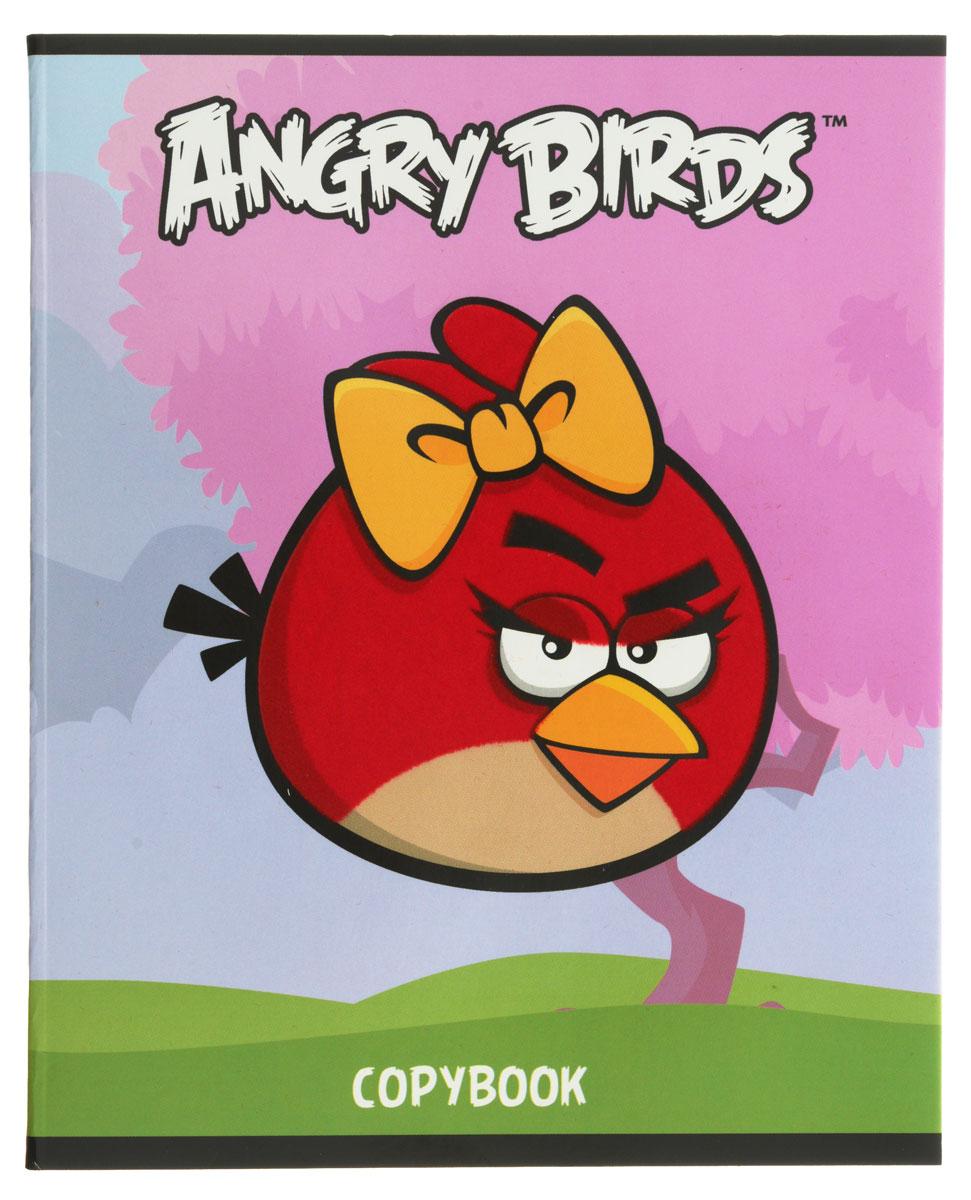 Hatber Тетрадь Angry Birds 48 листов в клетку цвет голубой розовый48Т5флB1_10401Тетрадь Hatber Angry Birds отлично подойдет для занятий школьнику или студенту. Обложка, выполненная из плотного картона, позволит сохранить тетрадь в аккуратном состоянии на протяжении всего времени использования. Изделие оформлено бархатистым изображением злой птички. Внутренний блок тетради, соединенный скрепками, состоит из 48 листов белой бумаги в голубую клетку с полями.