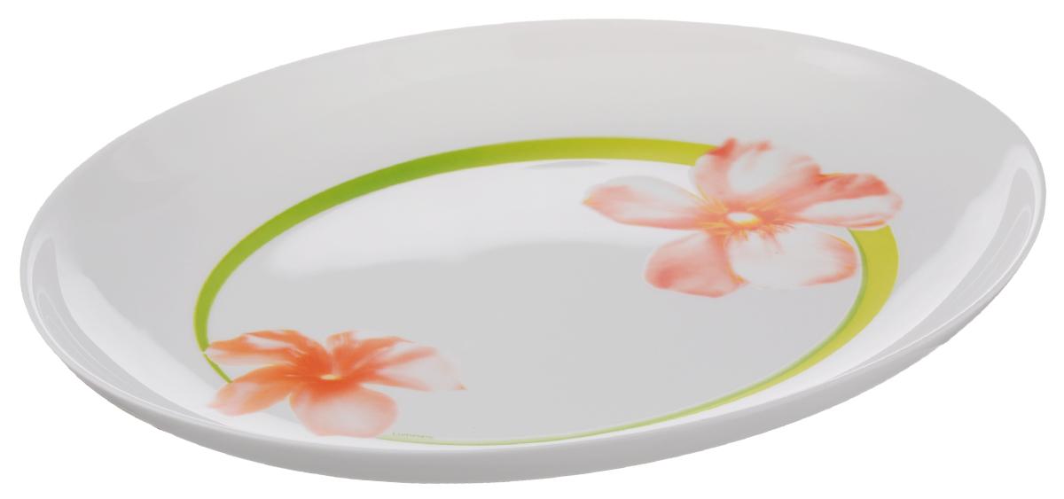 Блюдо Luminarc Sweet Impression, 33 х 25 смE5949Овальное блюдо Luminarc Sweet Impression изготовлено из ударопрочного стекла и оформлено изящным цветочным рисунком. Оно доставит истинное удовольствие ценителям прекрасного. Яркий дизайн, несомненно, придется вам по вкусу. Размер блюда (по верхнему краю): 33 х 25 см.