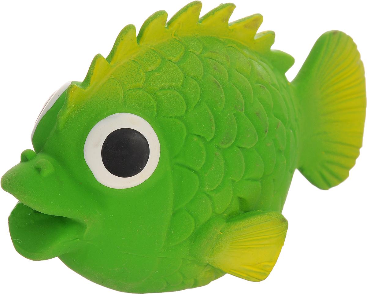 Игрушка для собак Beeztees I.P.T.S. Рыбка, цвет: зеленый16263/620875_зеленыйИгрушка для собак Beeztees I.P.T.S. изготовлена из безопасного латекса в форме забавной рыбки с большими глазами. Игрушка снабжена пищалкой. Предназначена для игр с собаками разных возрастов. Такая игрушка привлечет внимание вашего любимца и не оставит его равнодушным.