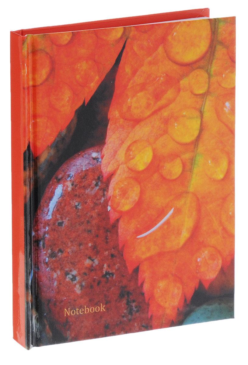 Listoff Записная книжка Осенние листья 80 листов в клетку72523WDЗаписные книжки призваны хранить в себе важную информацию на долгое время, поэтому нужно обязательно позаботиться, чтобы она была удобной для постоянного ношения с собой, стильной - потому что, на этот аксессуар обязательно обратят внимание окружающие.Обложка книжки для записей, выполненная из картона, оформлена красочным изображением. Внутренний блок формата А6 содержит 80 листов белой бумаги в клетку.Записная книжка Listoff Осенние листья- отличный подарок коллеге или деловому партнеру.