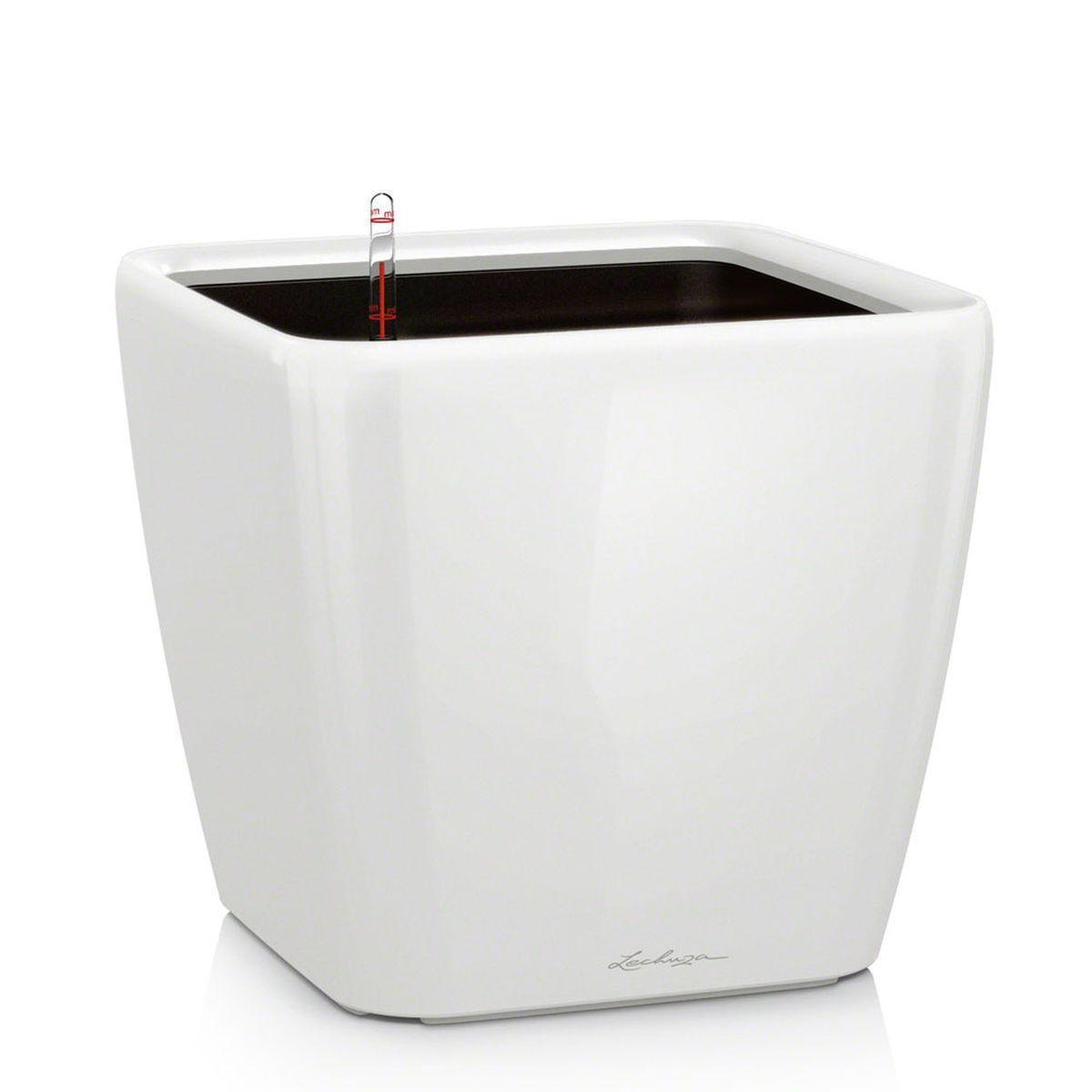 Кашпо Lechuza Quadro, с системой автополива, цвет: белый, 33 х 33 х 35 см16160Кашпо Lechuza Quadro, выполненное из высококачественного пластика, имеет уникальную систему автополива, благодаря которой корневая система растения непрерывно снабжается влагой из резервуара. Уровень воды в резервуаре контролируется с помощью специального индикатора. В зависимости от размера кашпо и растения воды хватает на 2-12 недель. Это способствует хорошему росту цветов и предотвращает переувлажнение. В набор входит: кашпо, внутренний горшок, индикатор уровня воды, вал подачи воды, субстрат растений в качестве дренажного слоя, резервуар для воды. Кашпо Lechuza Quadro прекрасно впишется в любой интерьер. Оно поможет расставить нужные акценты и придаст помещению вид, соответствующий вашим представлениям.