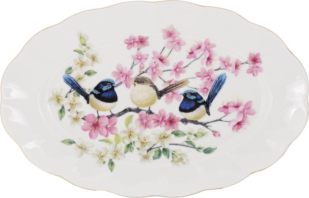 Блюдо Elan Gallery Райские птички, 30 х 19,5 х 2 см420042Сервировочное блюдо Elan Gallery Райские птички, изготовленное из высококачественной керамики, прекрасно подойдет для подачи нарезок, закусок и других блюд. Изделие, оформленное ярким изображением, украсит ваш праздничный или обеденный стол, а оригинальный дизайн понравится любой хозяйке. Не рекомендуется применять абразивные моющие средства. Не использовать в микроволновой печи.