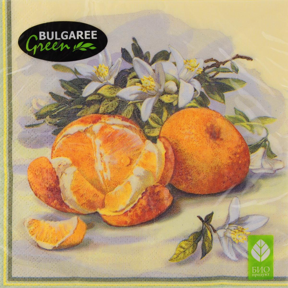 Салфетки бумажные Bulgaree Green Апельсины, трехслойные, 33 х 33 см, 20 шт1001989Декоративные трехслойные салфетки Bulgaree Green Апельсины выполнены из 100% целлюлозы европейского качества и оформлены ярким рисунком. Изделия станут отличным дополнением любого праздничного стола. Они отличаются необычной мягкостью, прочностью и оригинальностью. Размер салфеток в развернутом виде: 33 х 33 см.