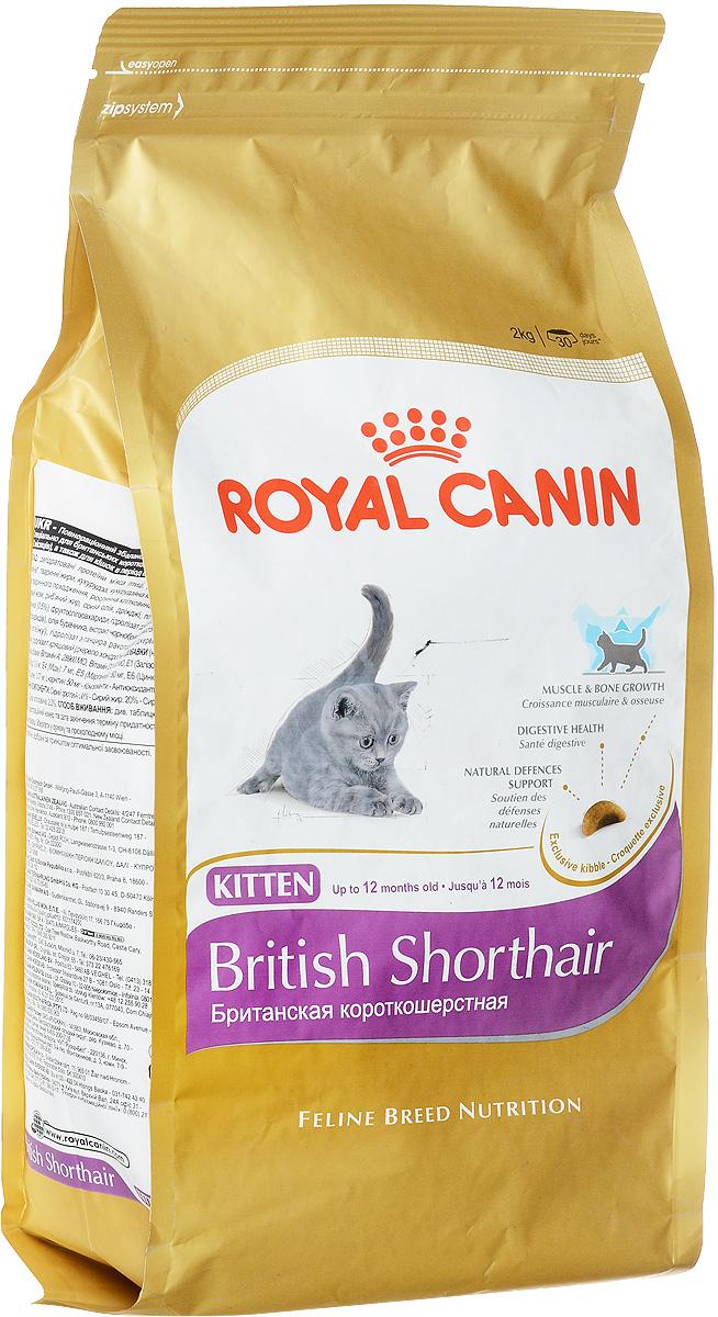 Корм сухой Royal Canin British Shorthair Kitten, для британских короткошерстных котят в возрасте от 4 до 12 месяцев, 2 кг52675Royal Canin British Shorthair Kitten - полнорационный корм для британских короткошерстных котят в возрасте от 4 до 12 месяцев. Фаза роста - ключевой этап развития котят этой удивительной породы, который определяет их будущее. Крупная и мускулистая, британская короткошерстная кошка уже с самого раннего возраста имеет особые потребности в питании. Сохраняются они и в дальнейшем, позволяя животному оставаться в форме. Очень многое из того, что важно для развития котят-британцев, зависит от корма. Здоровый рост котенка. Здоровье и прочность костей и мышц котенка британской короткошерстной породы существенно зависят от того, как пройдет фаза роста. Вот почему в это время так важен выбор подходящей диеты. Учитывая, что кошки этой породы не слишком подвижны и имеют склонность к полноте, им с самого раннего возраста нужно особое питание, причем в ограниченном объеме. Потребность в очень легко усваиваемом корме. Примерно до 12 месяцев пищеварительная система животного еще...