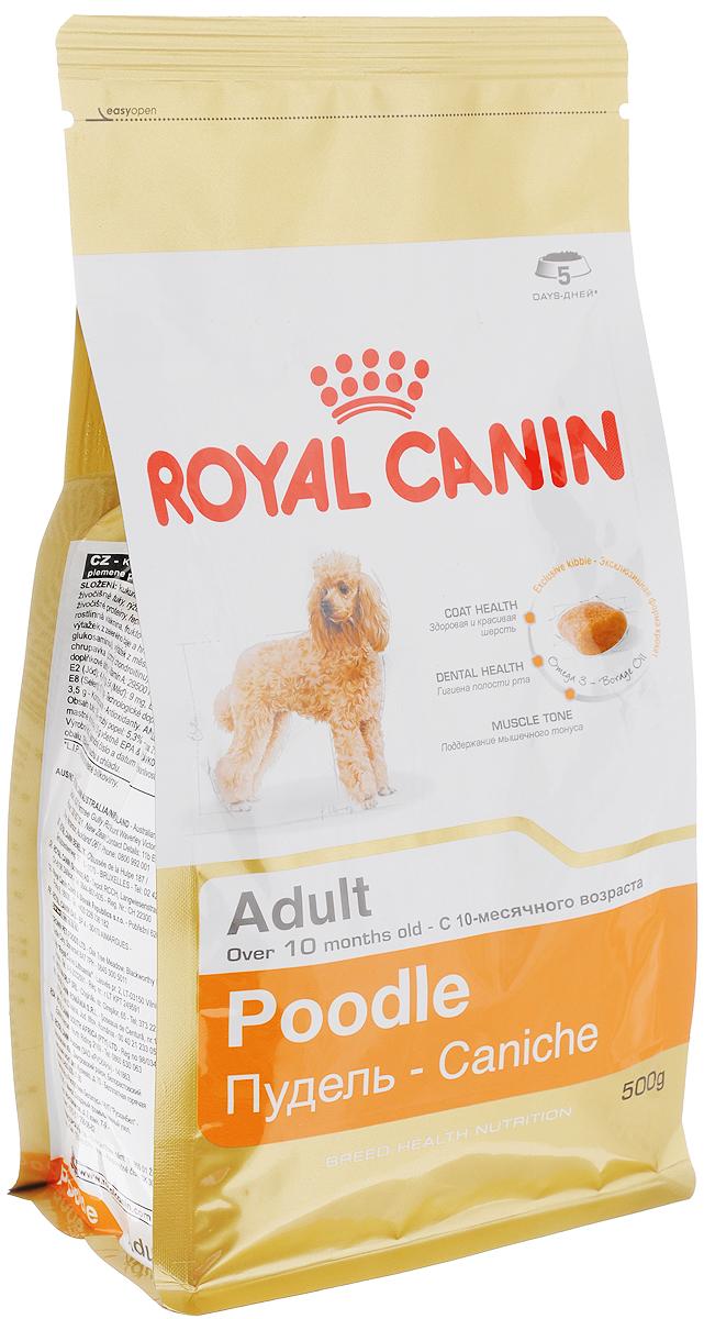 Корм сухой Royal Canin Poodle Adult, для собак породы пудель в возрасте старше 10 месяцев, 500 г0120710Сухой корм Royal Canin Poodle Adult специально создан для собак породы пудель в возрасте старше 10 месяцев.Пудель - это одна из самых известных и популярных сегодня пород декоративных пород собак. Мало кто знает, но это животное не только красиво и обаятельно, но еще и занимает второе место в списке самых умных пород собак. Надолго сохранить ясность ума и здоровую шерсть поможет правильное сбалансированное питание. Корм для пуделя насыщен витаминами, аминокислотами и минералами, жизненно необходимыми собакам этой породы. Продукт содержит питательные вещества, которые помогают поддерживать идеальное состояние кожи и шерсти. Формула снижает риск заболевания зубного камня благодаря ингредиентам, связывающим свободный кальций в слюне.Мышечный тонус. Способствует поддержанию мышечного тонуса у данной породы. Состав: кукуруза, дегидратированные белки животного происхождения (птица), изолят растительных белков, животные жиры, рис, кукурузная мука, кукурузная клейковина, гидролизат белков животного происхождения, свекольный жом, соевое масло, минеральные вещества, рыбий жир, дрожжи, растительная клетчатка, фруктоолигосахариды, масло огуречника аптечного (0,1%), экстракты зеленого чая и винограда (источник глюкозамина), экстракт бархатцев прямостоячих (источник лютеина), гидролизат из хряща ( источник хондроитина). Добавки (в 1 кг): Витамин А: 29500 МЕ, Витамин D3: 800 ME, Железо: 44 мг, Йод: 4,4 мг, Марганец: 58 мг, Цинк: 173 мг, Селен: 0,1 мг..Товар сертифицирован.Уважаемые клиенты!Обращаем ваше внимание на возможные изменения в дизайне упаковки. Качественные характеристики товара остаются неизменными. Поставка осуществляется в зависимости от наличия на складе.
