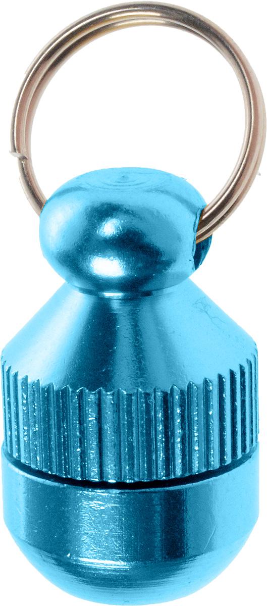 Адресник-капсула Vila, цвет: голубой, 2 см0120710Адресник-капсула Vila является одним из способов идентификации животных. Корпус изделия выполнен из прочного алюминия. Внутрь капсулы вкладывается информация о животном и владельце, а также она служит украшением к ошейнику.