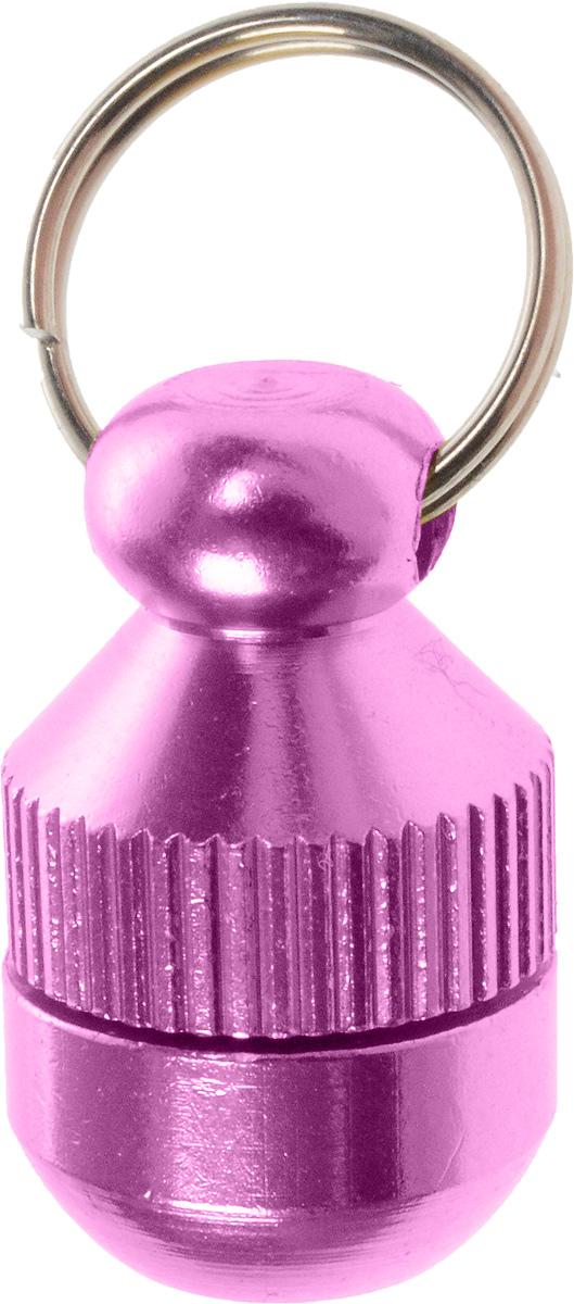 Адресник-капсула Vila, цвет: фиолетовый, 2 см0120710Адресник-капсула Vila является одним из способов идентификации животных. Корпус изделия выполнен из прочного алюминия. Внутрь капсулы вкладывается информация о животном и владельце, а также она служит украшением к ошейнику.