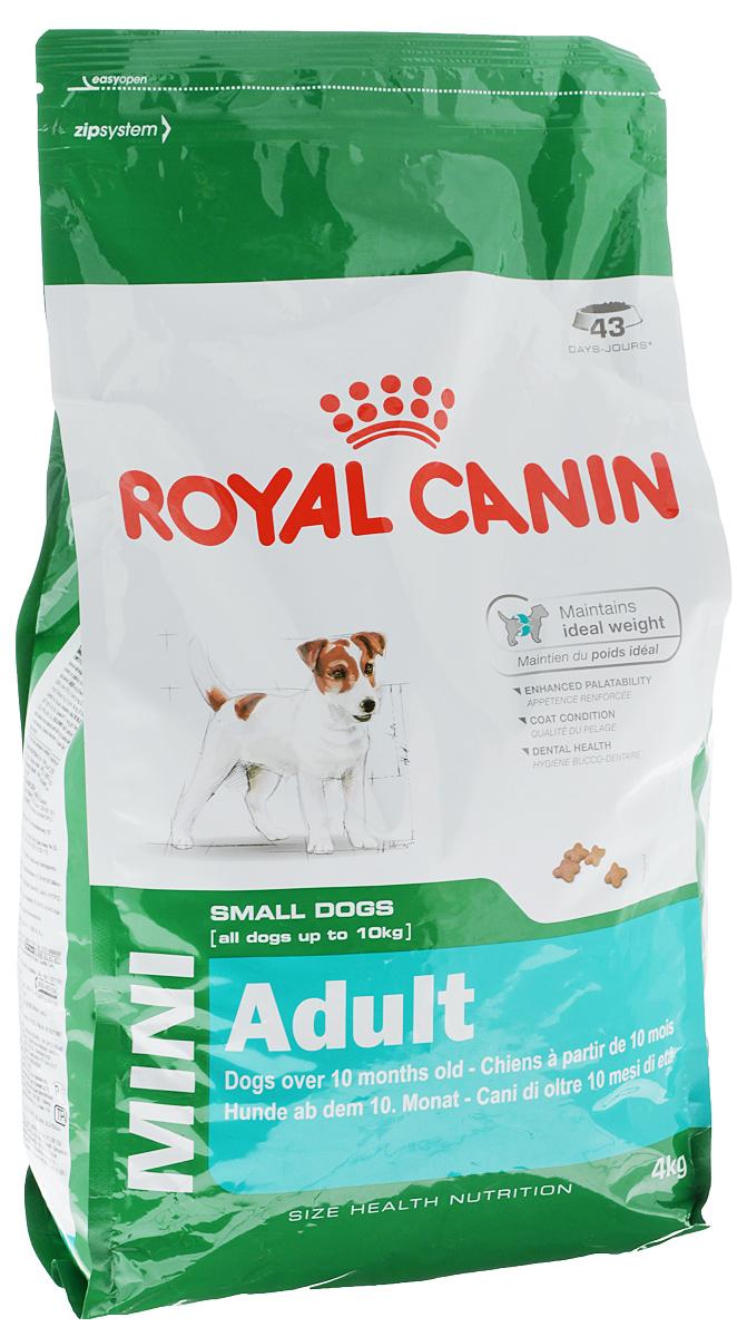 Корм сухой Royal Canin Mini Adult, для собак мелких размеров с 10 месяцев до 8 лет, 4 кг43736Корм сухой Royal Canin Mini Adult - полнорационный сухой корм для поддержания прекрасной физической формы собак мелких размеров (вес взрослой собаки до 10 кг) с 10 месяцев до 8 лет. Поддержание идеального веса. L-карнитин стимулирует метаболизм жиров в организме. Удовлетворяет высокие энергетические потребности собак мелких размеров благодаря точно рассчитанной энергоемкости рациона (3737 ккал/кг) и сбалансированному содержанию белка (26%). Улучшенные вкусовые качества. Стимулирует аппетит благодаря своим уникальным свойствам. Текстура, форма и размер крокет специально разработаны для облегчения захвата корма. Тщательно отобранные ингредиенты, натуральные ароматизаторы и современная упаковка, сохраняющая свежесть и аромат продукта, гарантируют его превосходный вкус. Здоровая шерсть. Питает шерсть благодаря включению в состав корма серосодержащих аминокислот (метионин и цистин), жирных кислот Омега 6 и витамина А. Здоровье зубов. Помогает замедлить...