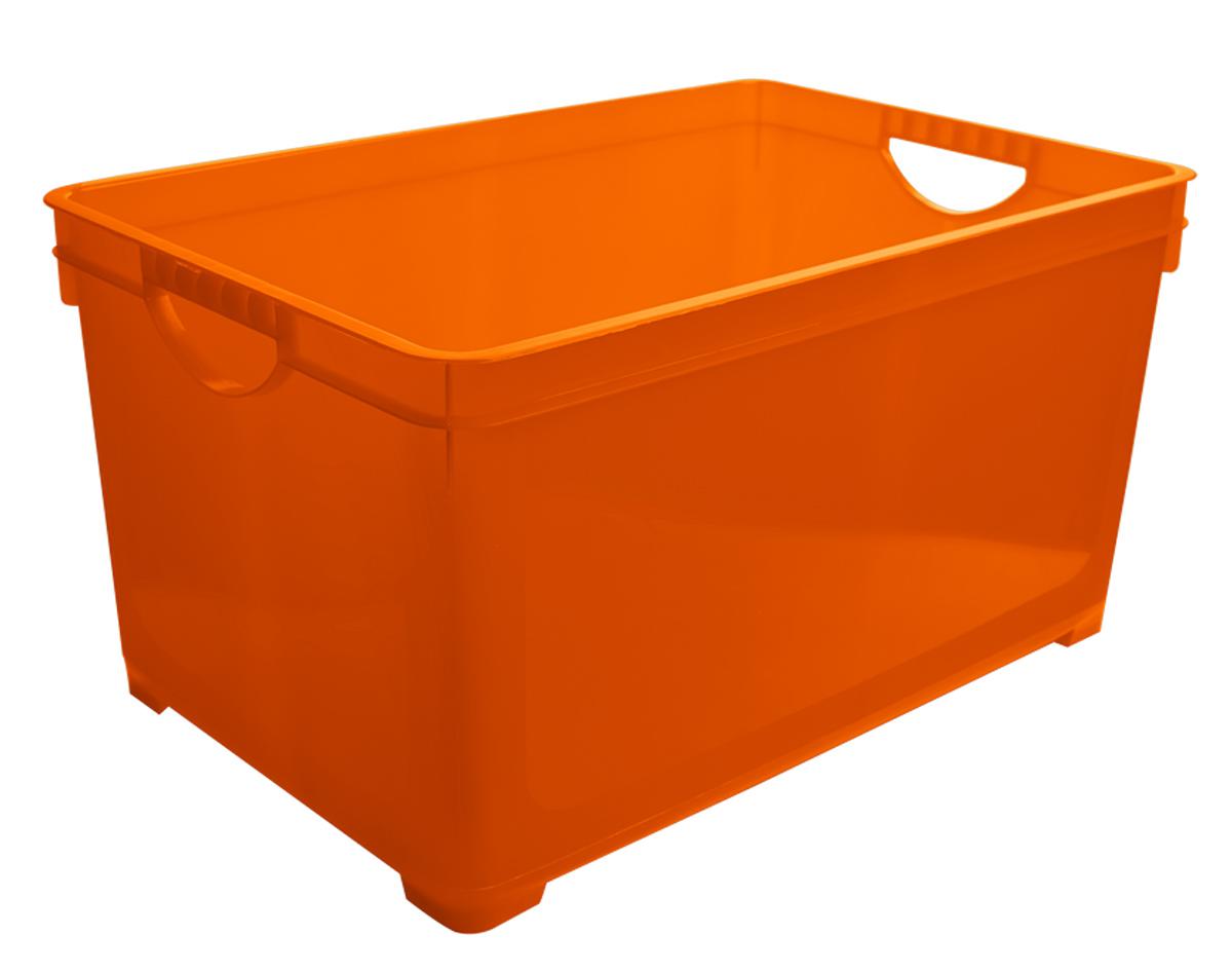 Ящик для хранения BranQ, цвет: оранжевый, 5 лBQ1005ОРУниверсальный ящик для хранения BranQ, выполненный из прочного цветного пластика, поможет правильно организовать пространство в доме и сэкономить место. В нем можно хранить все, что угодно: одежду, обувь, детские игрушки и многое другое. Прочный каркас ящика позволит хранить как легкие вещи, так и переносить собранный урожай овощей или фруктов. Ящик оснащен двумя ручками для удобной транспортировки.